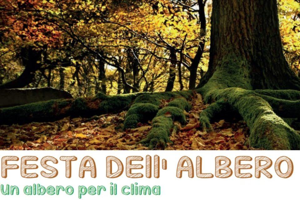 Festa dell'albero – Un albero per il clima